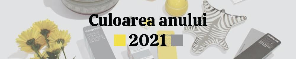 Poartă culoarea anului 2021